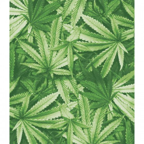 "Ganja Dreams Luxury Polyester Blanket Measures 79"" x 91"""